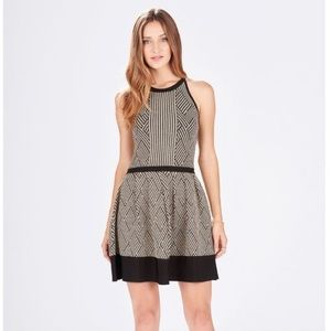 Parker black and gold metallic knit A-line dress